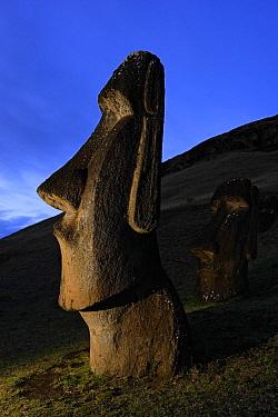 Moai stone statue at dusk on the slopes of the quarry at Rano Raraku volcano, Easter Island Pacific ocean, November 2004  -  Oriol Alamany/ npl