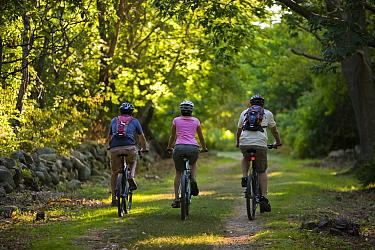 Three people biking at Odiorne State Park, Rye, New Hampshire, USA, September 2008  -  Jerry Monkman/ npl