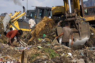 Children looking for recyclable objects in landfill site, Dhaka, Bangladesh, July 2008  -  David Woodfall/ npl