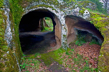 Medieval cave dwellings, carved out of tufa rock, at the Vitozza troglodyte settlement Tuscany, Italy April 2009  -  Angelo Gandolfi/ npl