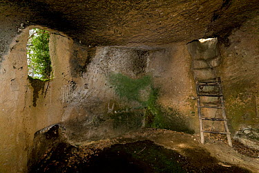 Interior of medieval cave dwellings, carved out of tufa rock, at the Vitozza troglodyte settlement Tuscany, Italy April 2009  -  Angelo Gandolfi/ npl