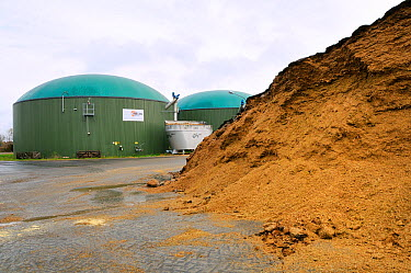 Biogas plant with fermenting chambers for methane production from maize silage and silage heap in foreground Cornau, near Vechta, Lower Saxony, Germany  -  Nick Upton/ npl