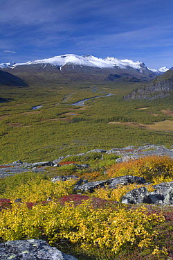 View along Rapadalen valley from Nammatj towards Lulep Spadnek, Sarek National Park, Laponia World Heritage Site, Lapland, Sweden, September 2008  -  WWE/ Cairns/ npl