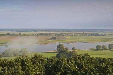 Elbe River with a small patch of mist, Elbe Biosphere Reserve, Lower Saxony, Germany, September 2008  -  WWE/ Damschen/ npl