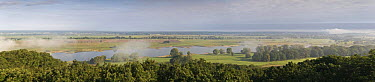 Panoramic view of the River Elbe, with mist over the water, Elbe Biosphere Reserve, Lower Saxony, Germany, September 2008, September 2008  -  WWE/ Damschen/ npl