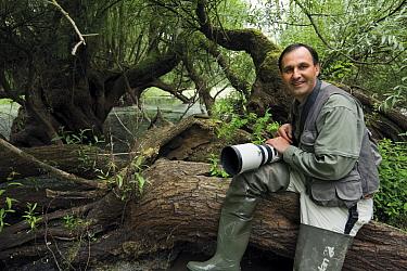 Photographer, Elio della Ferrera, holding camera sitting on fallen tree, in an oxbow of the Sava river flooded area, Lonjsko Polje Nature Park, on the Croatia Bosnia and Herzegovina border, June 2009  -  WWE/ della Ferrera/ npl