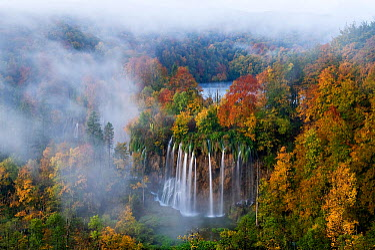Veliki Prstavci waterfalls close to Gradinsko lake at dawn, Upper Lakes, Plitvice Lakes NP, Croatia, October 2008  -  WWE/ Biancarelli/ npl
