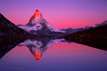 Matterhorn (4,478m) with reflection in Lake Riffel at sunrise, Switzerland, September 2008 WWE BOOK WWE OUTDOOR EXHIBITION NOT TO BE USED FOR GREETING CARDS OR CALENDARS TILL 2013 PRESS IMAGE  -  WWE/ Popp-Hackner/ npl
