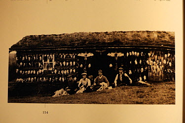 Old Photograph of a bird hunting party, Forollhogna National Park, Norway,  -  WWE/ Munier/ npl