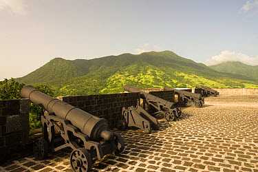 Line of cannons, at Brimstone Hill Fortress on the island of St Kitts, Dutch Caribbean, Netherlands Antilles, West Indies August 2006  -  Michele Westmorland/ npl
