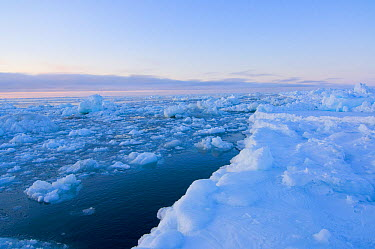 Landscape of sea ice flowing through an open lead in the pack ice This is potentially dangerous for Inupiaq whalers and hunters If the ice should push up against the main pack, sections may break off,...  -  Steven Kazlowski/ npl