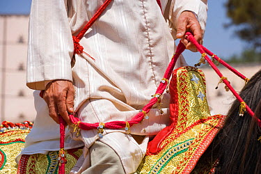 Close-up of the reins and saddle of a Berber warrior during the Fantasia, in Dar Es Salam, Morocco, June 2010  -  Kristel Richard/ npl