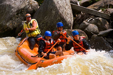 Whitewater rafting down Dragon's Tooth rapid on the Deerfield River in Rowe, Massachusetts, USA Dryway run, Class IV September 2006  -  Jerry Monkman/ npl