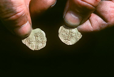 Gold coins recovered from the shipwreck Las Maravillas, a Spanish galleon sunk in 1658, Bahamas 1987 model released  -  Jeff Rotman/ npl