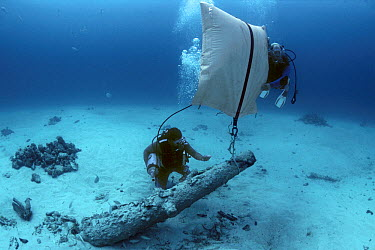 Lifting a cannon during the recovery of the shipwreck Las Maravillas, a Spanish galleon sunk in 1658, Bahamas 1987  -  Jeff Rotman/ npl
