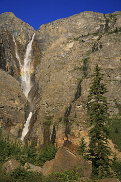 View to Helmet Falls with forest of Engelmann spruce (Picea engelmannii) and subalpine fir (Abies lasiocarpa), Kootenay National Park, British Columbia, Canada World Heritage Site  -  Alan Watson/ npl
