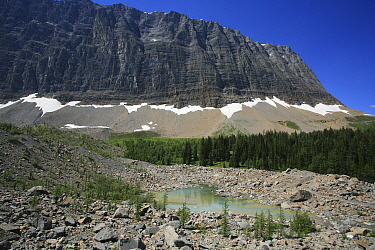 Glacial moraine with a small tarn and conifer forest and the Rockwall behind, Kootenay National Park, British Columbia, Canada World Heritage Site July 2007  -  Alan Watson/ npl