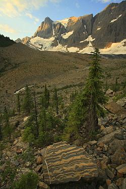Kootenay National Park, British Columbia, Canada World Heritage Site July 2007  -  Alan Watson/ npl