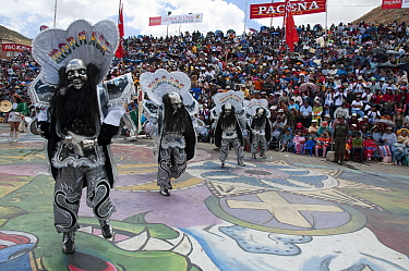 Oruro Carnival, dancers performing the traditional 'Diablada' dance, characterised by a mask and devil suit wore by the dancersThis is the biggest annual cultural event in Bolivia, with Morenada music...  -  Rhonda Klevansky/ npl