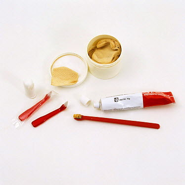 Tooth brushes, finger brush, paste and dental hygiene pads for dogs and cats  -  Jane Burton/ npl