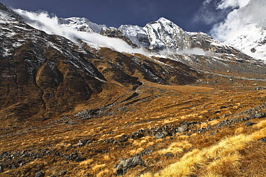 Annapurna South (7219 m) seen from trail leading to Annapurna base camp, Nepal, November 2007  -  Michel Petit/ npl