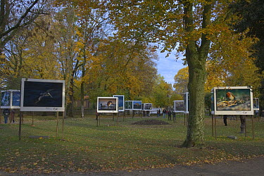 Outdoor nature photography Exhibition, part of Nature Photography Festival at Montier en Der, Champagne, France  -  Dietmar Nill/ npl