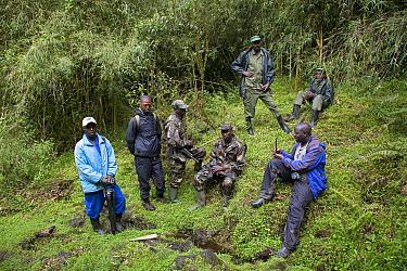 Guide, porter, scientist and soldier guards, Parc National des Volcans, Rwanda  -  Ingo Arndt/ npl
