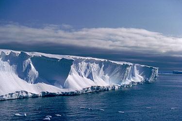 Brunt Ice Shelf cliffs (30m high), Antarctica  -  Doug Allan/ npl