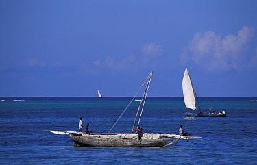Traditional fisherman's dhow, Zanzibar, Tanzania  -  Marguerite Smits Van Oyen/ npl