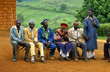 Men at village meeting, Bamenda Highlands, North West Province, Cameroon  -  Nigel Bean/ npl