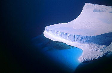 Iceberg, Bergy Bit, Cape Darnley, Australian Antarctic Territory  -  Pete Oxford/ npl