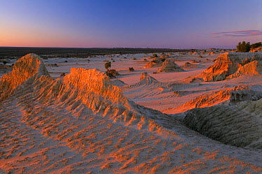 The Walls of China; dry lake beds and crescent shaped dunes (a lunette) at Mungo National Park, New South Wales, Australia  -  David Noton/ npl