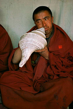 Buddhist monk blows a horn made from large shell, Nepal  -  Leo & Mandy Dickinson/ npl