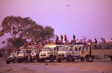 Tourists on overland vehicles watching game at waterhole, Savuti, Botswana  -  Pete Oxford/ npl