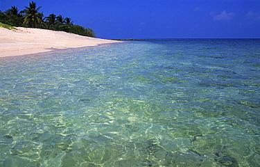 Tropical beach, Turtle Islands National Park, Sabah, Malaysia  -  Matthew Maran/ npl