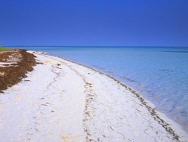 White sandy beach, Bahia Honda Beach, Florida, USA  -  Rob Tilley/ npl