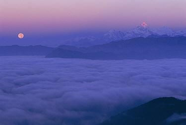 Ganesh ridge and full moon above clouds from Laurebina Yak Langtang NP, Nepal  -  Bernard Castelein/ npl