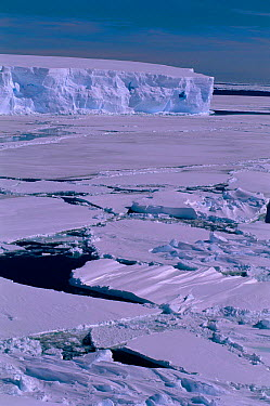 Pack ice with tabular iceberg Cape Darley, Australian Antarctic Territory, Antarctica  -  Pete Oxford/ npl