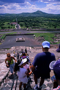 Climbing the Pyramid of the Sun, Teotihuacan, Aztec archaeological site, Mexico  -  Daniel Gomez/ npl