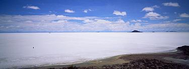 Car crossing Uyuni, largest salt pan in world, south west Bolivia, South America  -  Pete Oxford/ npl