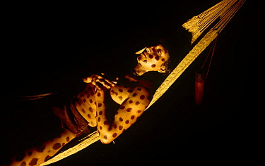 Reconstruction scene of Yanomani Indian boy initiation, with Jaguar spots painted upon him, he relaxes as he chews hallucinogen, Amazonia Brazil, for BBC television programme Beauty and the Beast  -  Bernard Walton/ npl