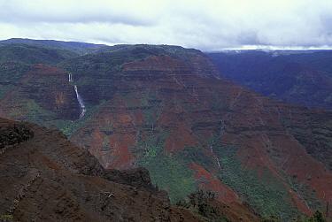 Waimea canyon, Kauai, Hawaii, USA  -  Lynn M. Stone/ npl