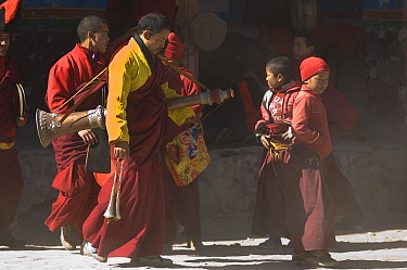 Napalese monks, carrying 'Lawa' (long trumpet)preparing for the final ceremony of 'Duk chu' festival, where monk's dance and prayer for a prosperous year Lo-Manthang, Upper Mustang, Nepal  -  Bernard Castelein/ npl