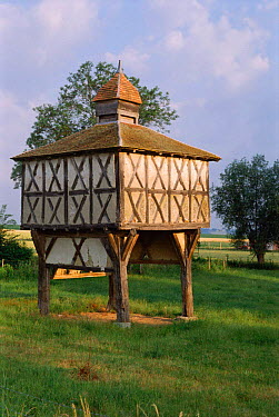 Traditional dove-cote Bovry, France  -  Jean E. Roche/ npl