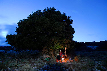 People sheltering under a tree with fire, Sardinia, Italy  -  Fabio Liverani/ npl
