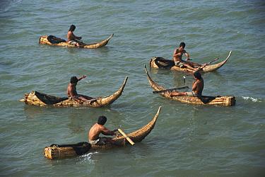 Fishermen in traditional reed boats Pimental, Pacific coast, Peru, South America  -  Karen Bass/ npl