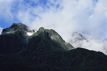 Summit of Mount Stanley in cloud, Ruwenzori mountains, Mountains of the moon, Virunga NP, Democratic Republic of Congo (formerly Zaire)  -  Jabruson/ npl