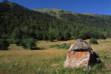 Aigues Tortes, St Mauricio NP, Pyrenees, Spain  -  Jose B. Ruiz/ npl