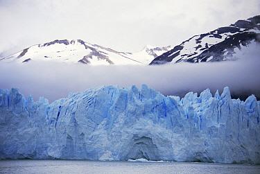 Perito Moreno glacier with low cloud, near Calafate, Patagonia, Southern Argentina  -  Rhonda Klevansky/ npl