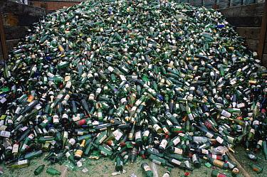 Glass bottles for recycling Devon UK  -  Dan Burton/ npl